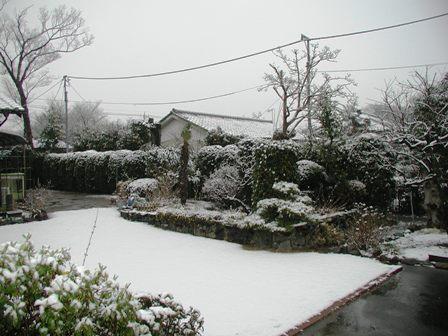 2009初雪